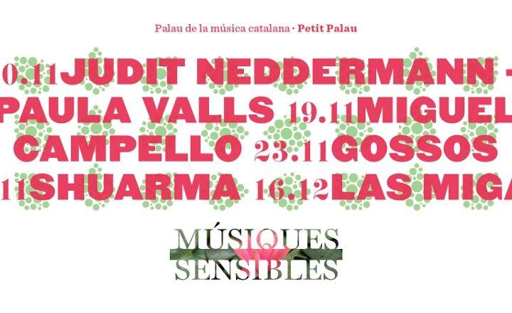 Arriba la 5a edició del Músiques Sensibles, el festival que uneix música i activisme social